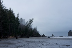 Washington coast.